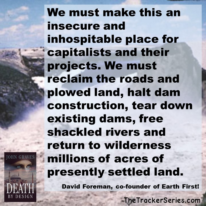 We must make this an insecure and inhospitable place for capitalists. We must reclaim the roads and plowed land, halt dam construction, tear down existing dams, free shackled rivers and return to wilderness millions of acres of presently settled land. — David Foreman, co-founder of Earth First!